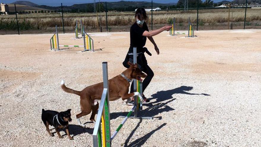 Campillos inaugura su nueva área de recreo canino tras una inversión de más de 40.000 euros