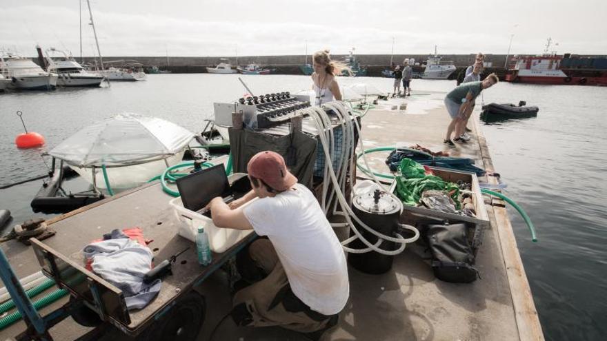 Científicos de seis países estudian en Taliarte cómo el mar elimina el CO2