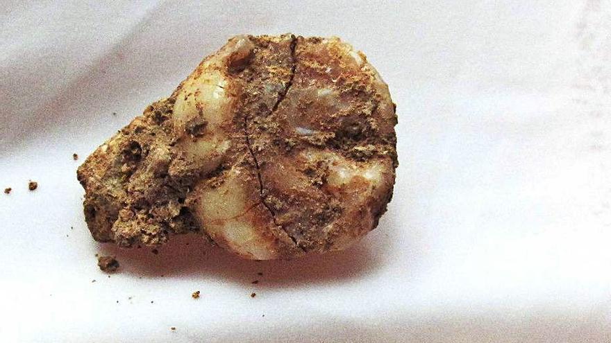 El sistema d'ocupació dels neandertals a les Teixoneres no va variar en 20.000 anys