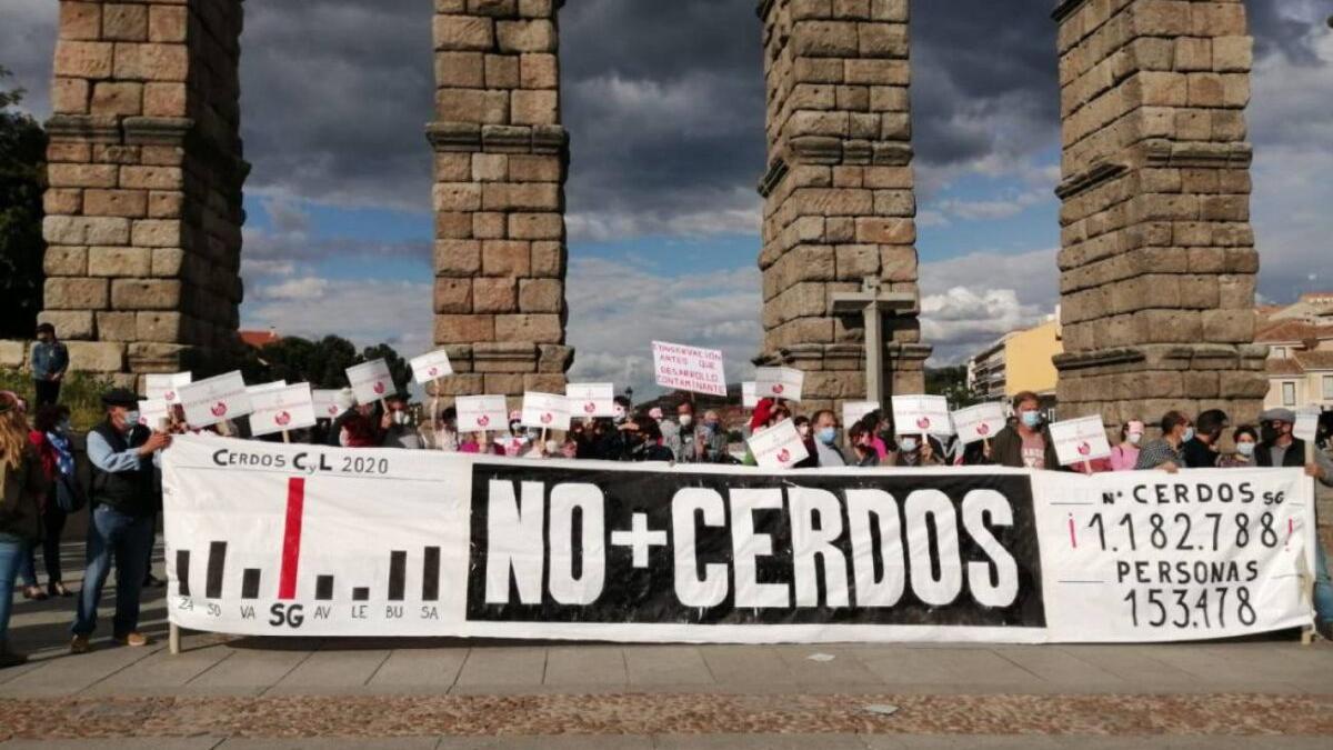 La 'España vaciada' se subleva contra las macrogranjas de cerdos
