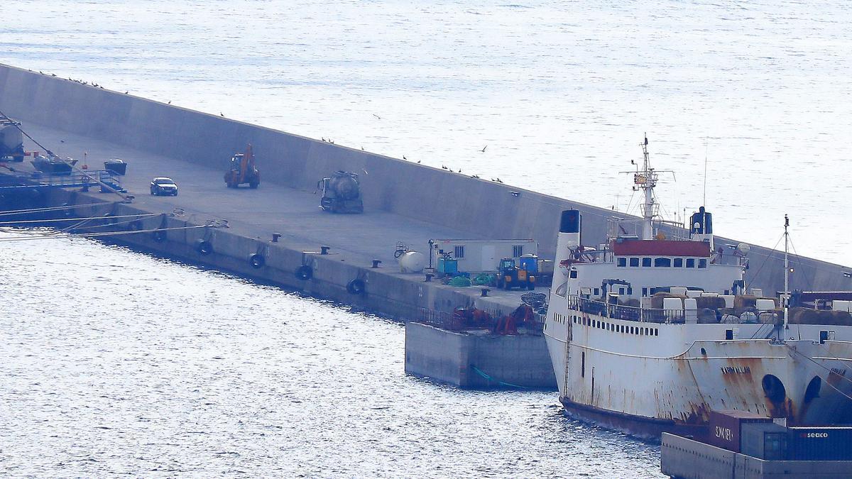 El barco con los terneros en el Puerto de Cartagena