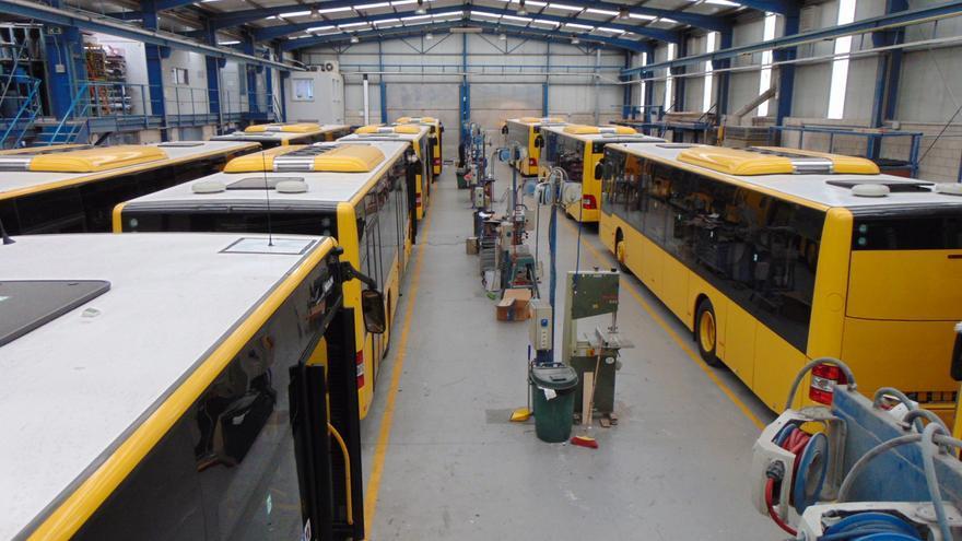 Guaguas incorporará 57 vehículos en los próximos meses para potenciar su servicio en barrios
