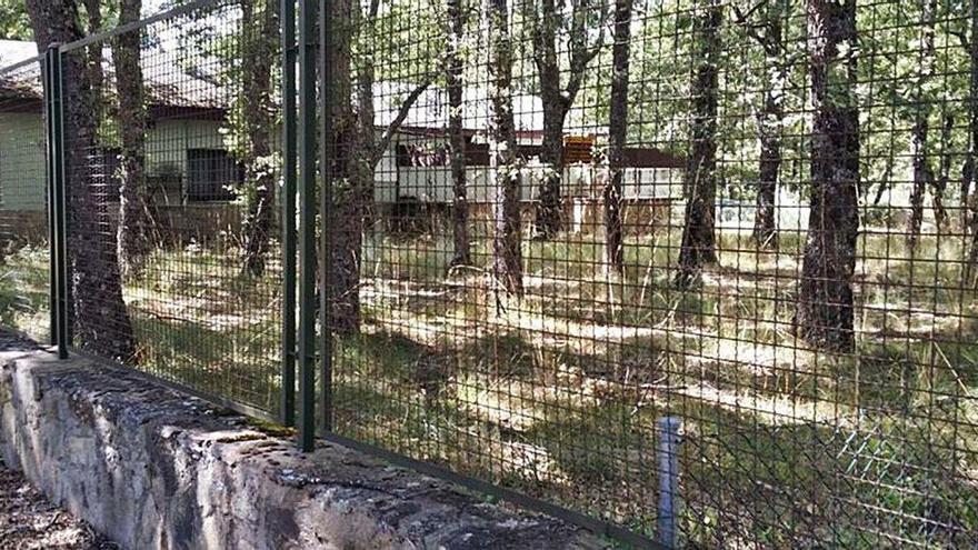 El PSOE de Galende reclama a la Alcaldía una solución a los camping