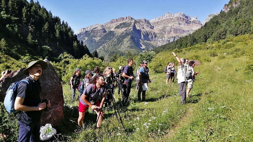 Conocer las especies del Pirineo para preservarlas