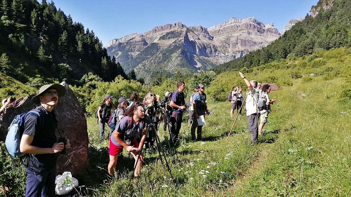 Naturaleza 8 Algunos de los asistentes al curso 'Mamíferos del Pirineo'.
