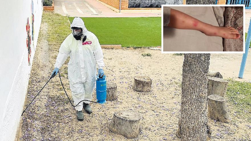 Fumigan un colegio de la Vall por quejas de picaduras de pulgas