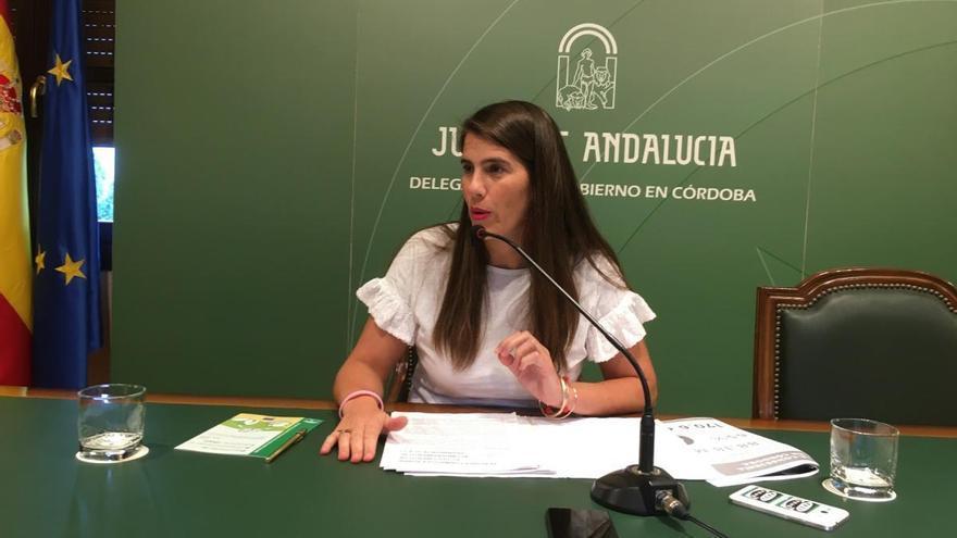 La Junta concede seis meses para la adaptación digital del Documento de Acompañamiento al Transporte