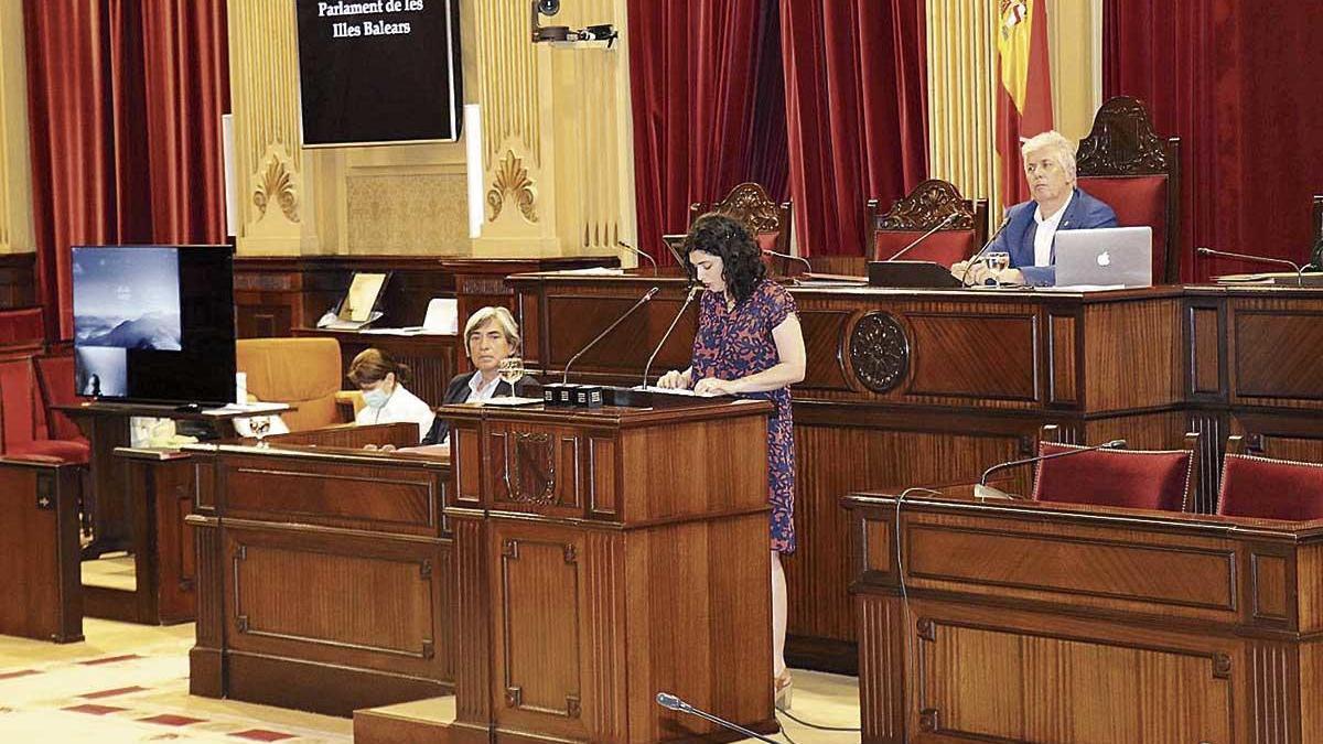 La consellera Isabel Castro ayer durante su comparecencia en el Parlament.
