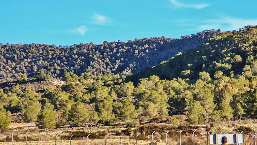 El TSJ blinda las 10.000 hectáreas protegidas de Sierra Escalona
