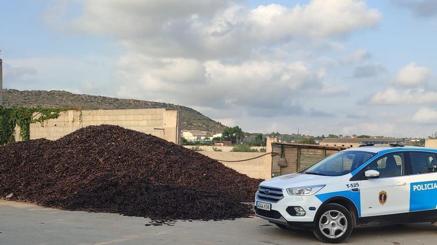 Intervienen 56,6 toneladas de algarroba y localizan cuatro almacenes ilegales