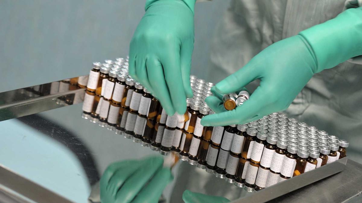 Un lote de la vacuna contra la tuberculosis de Biofabri