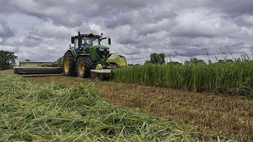 """COAG alerta de las consecuencias de la """"descomunal subida"""" de los fertilizantes"""