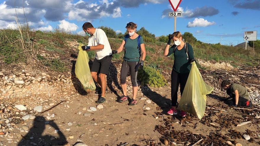 15 Müllsäcke voll: Freiwillige säubern den Strand zwischen Alcúdia und Pollença
