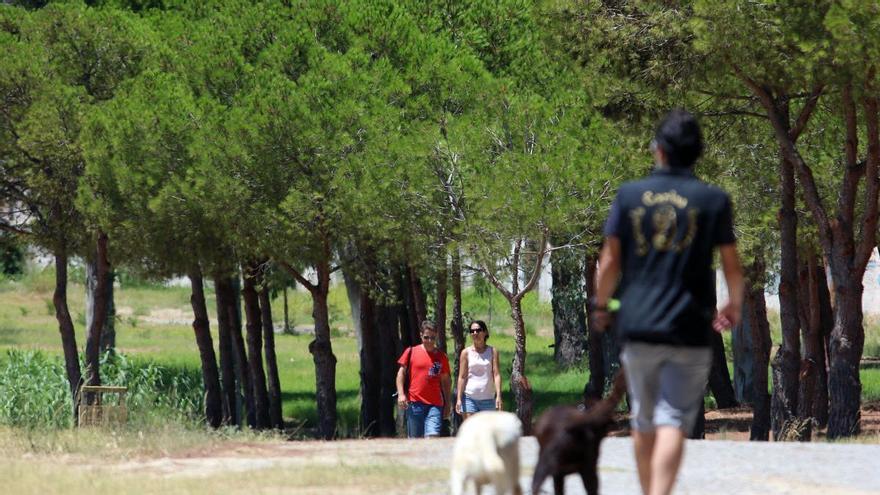 El Ayuntamiento de Málaga dotará de luz los accesos del Campamento Benítez