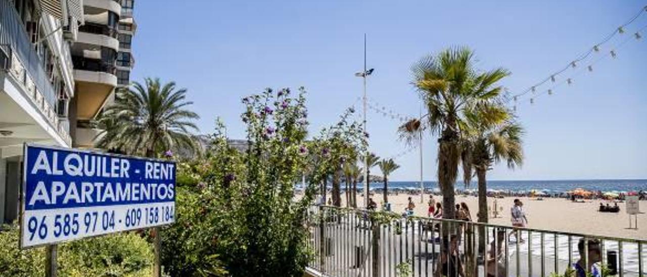 El alquiler turístico en Benidorm se revuelve contra el Consell al considerar que la nueva legislación pone en riesgo al sector