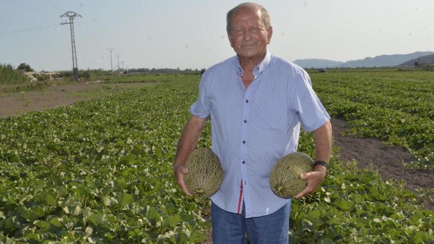 Los melones de Eixea, un tesoro para el paladar