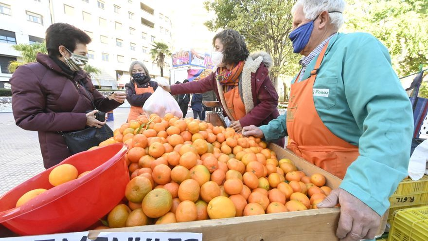 La clemenules ensayará su marca de calidad en fruterías de Castellón en un mes