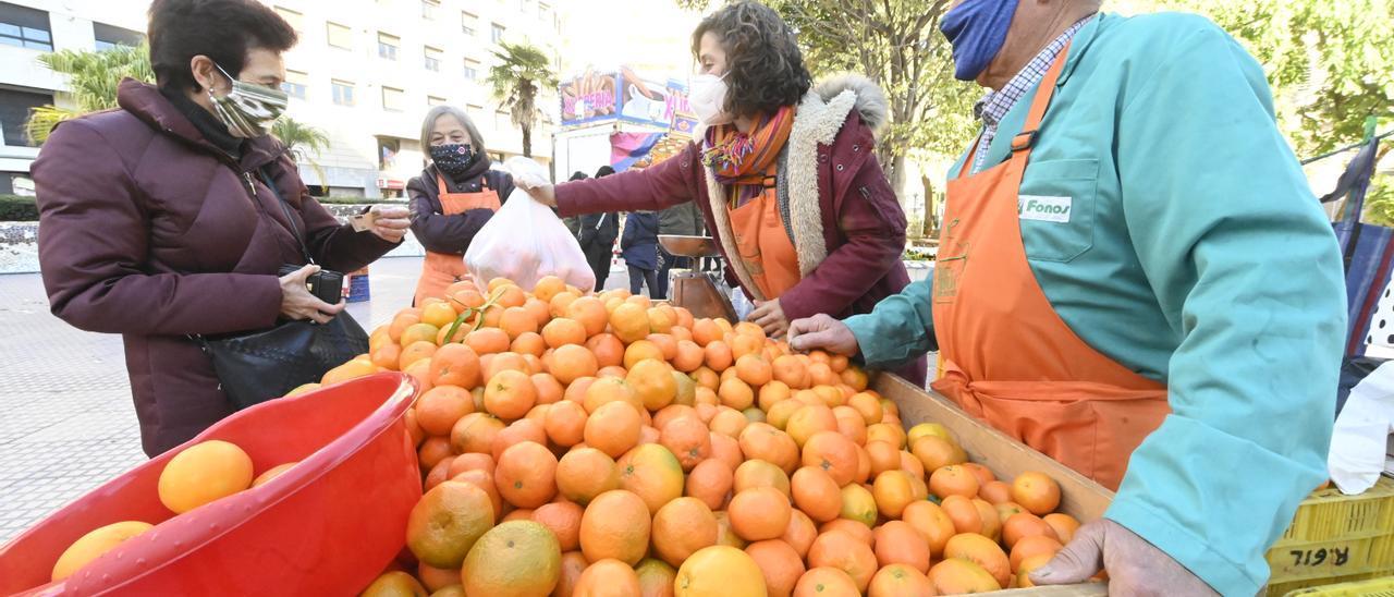 Venta de clemenules en el Mercat de la Taronja de Castelló, hace un año.