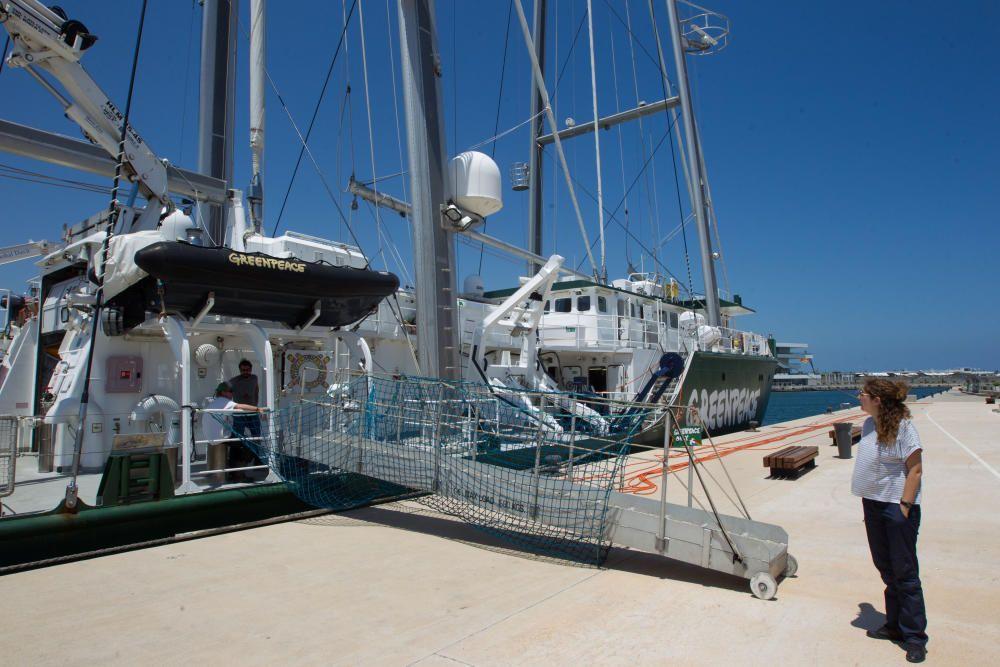 El Rainbow Warrior de Greenpeace atracado en el puerto de València.