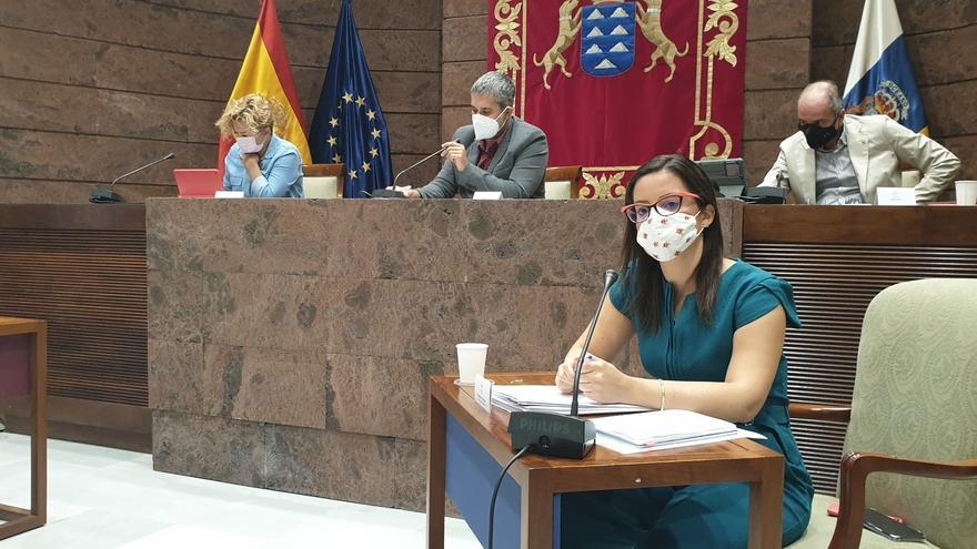 Canarias inyecta este año 11,2 millones al turismo para incentivar la demanda