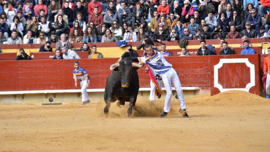 Los festejos taurinos populares vuelven a Castelló con tres grandes espectáculos