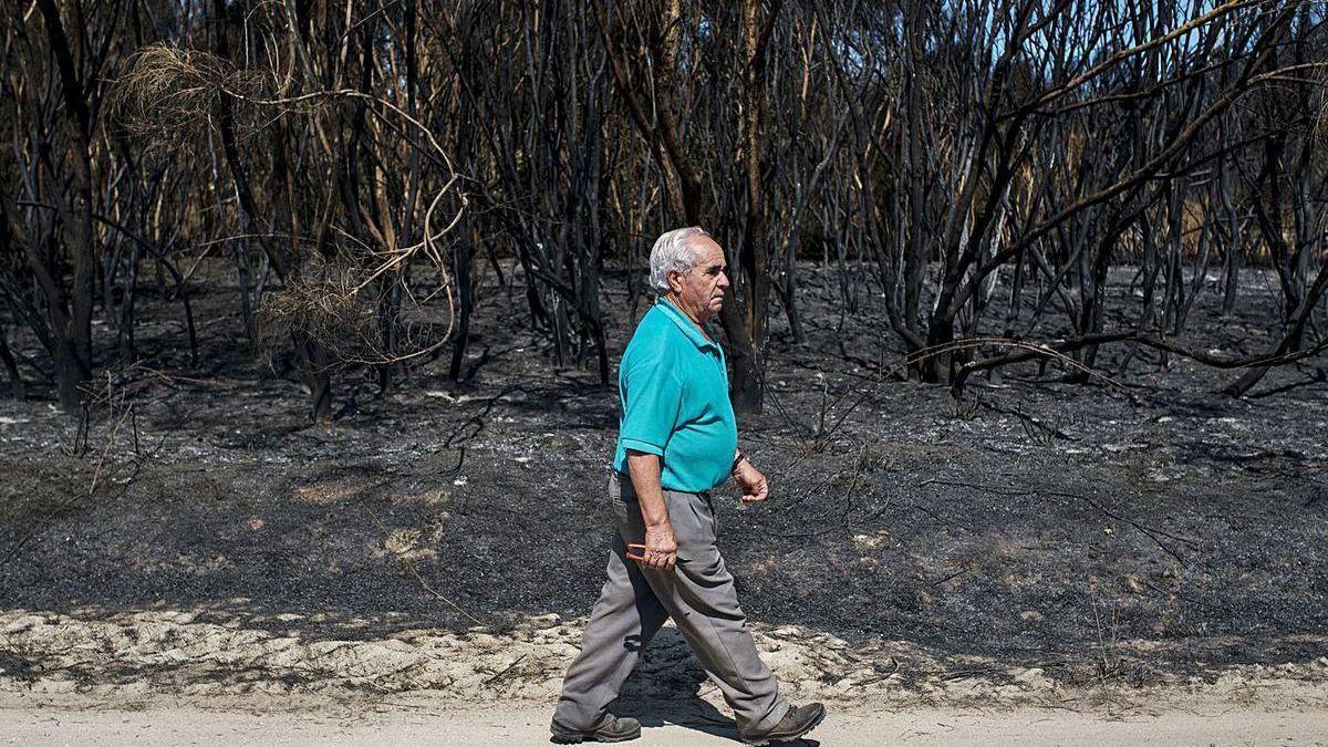 Un vecino de A Salgueira, en Monterrei, camina sobre la masa forestal quemada.