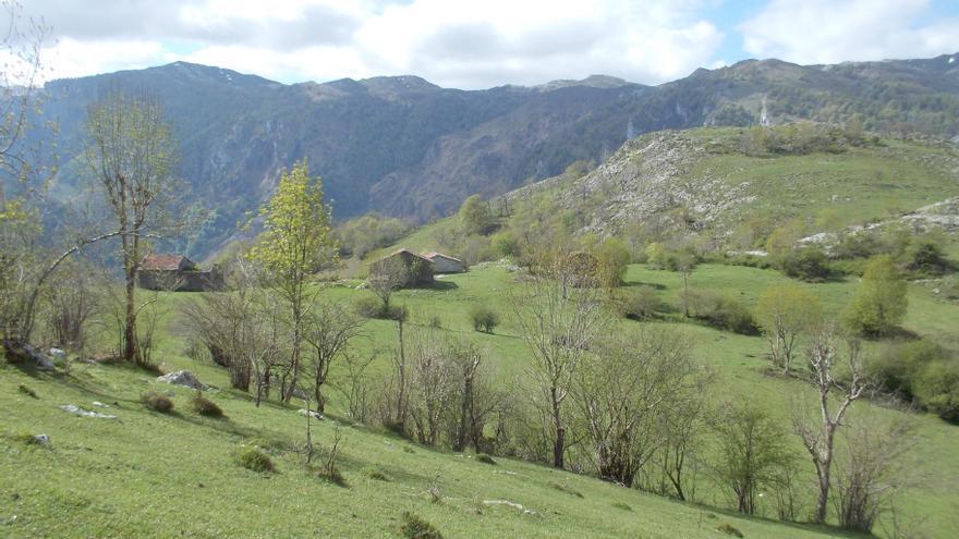 Rutas por Asturias: Invernales de Nava (Cabrales)