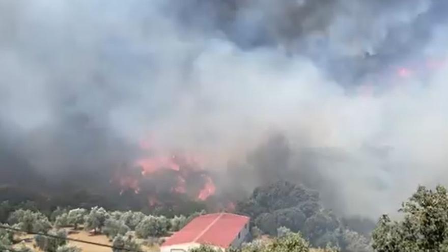 El incendio declarado el pasado domingo en Yunquera ha afectado a más de 20 hectáreas forestales
