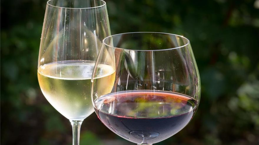 La IGP de Castellón: vinos 100% castellonenses