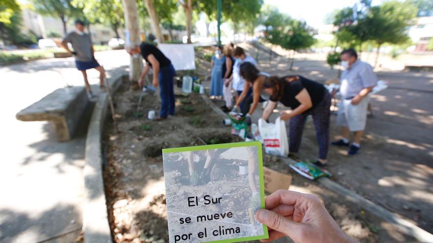 Varios colectivos reclaman una mejora del Parque de Verano del barrio Guadalquivir de Córdoba