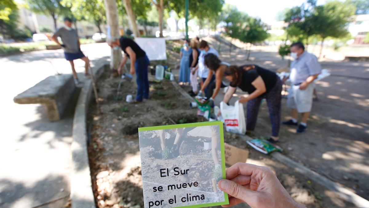 Un momento de la plantación realizada en el parque del barrio Guadalquivir