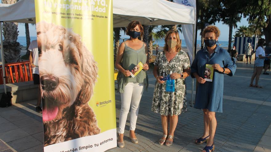 Benicàssim impulsa una campaña de concienciación contra las cacas de perro en sus calles