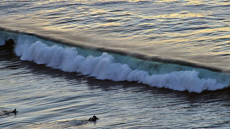¿Surfeando la ola del coronavirus?