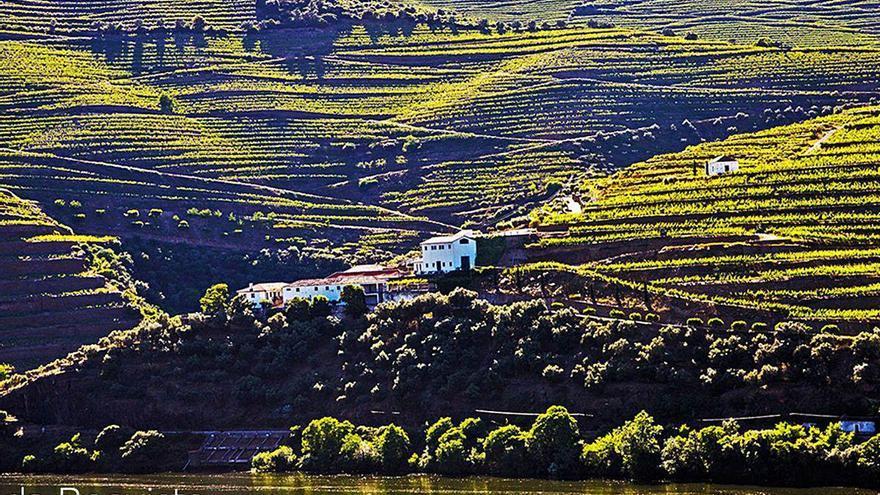 Abanca refuerza su imperio del vino con una bodega histórica del Douro