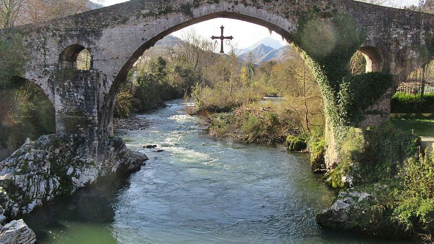Cangas de Onís sigue a la espera de que se retire la vegetación del puente romano