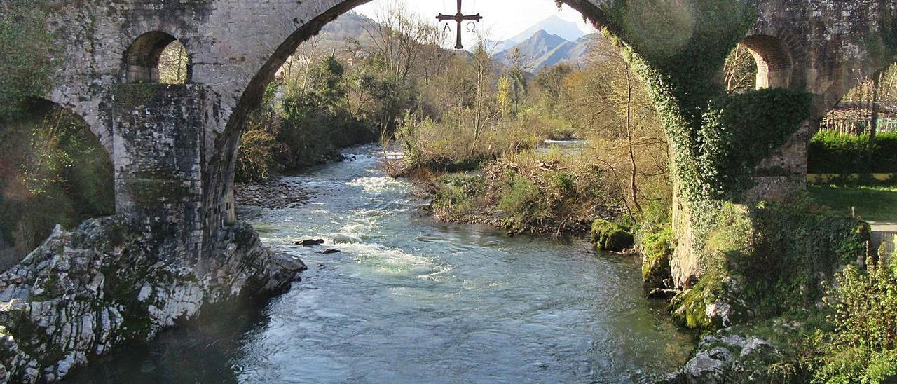 El puente romano de Cangas de Onís, cubierto de hiedra y vegetación. | J. M. C.