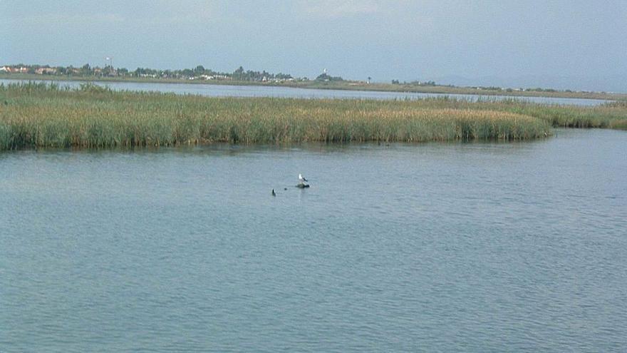 El Delta del Ebro y la falta de sedimentos