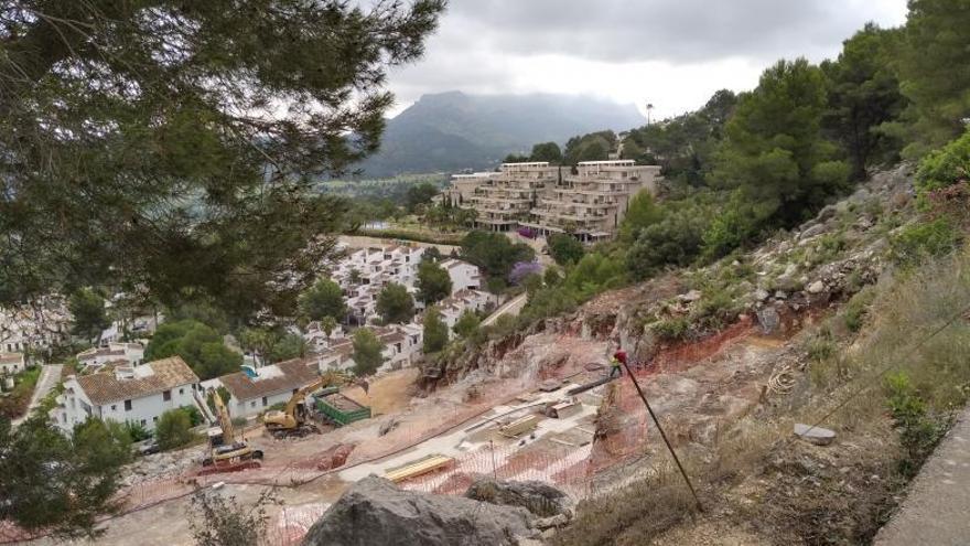 Talan pinos de 70 años en un desmonte en Pedreguer