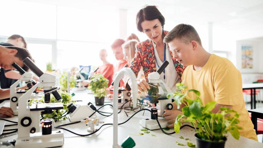 Asiste a la tercera edición de los Premios BBVA Futuro Sostenible