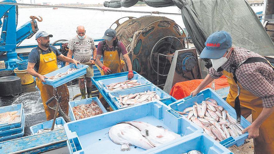 La pesca quiere que el comisario europeo compruebe la realidad del sector en Castellón
