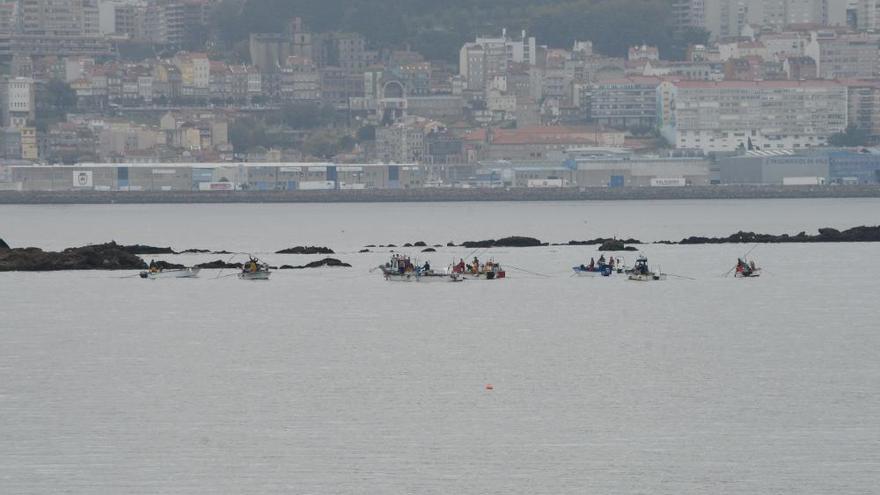 Arranca la campaña de marisqueo en O Morrazo