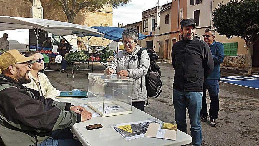 Symbolisches Votum gegen die Monarchie in acht Mallorca-Gemeinden