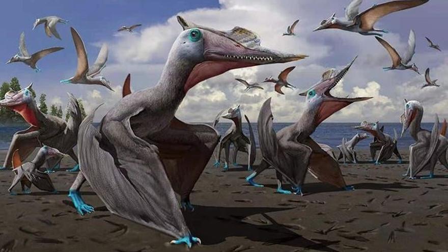 Descubren una nueva especie de pterosaurio gracias a las unas huellas fósiles