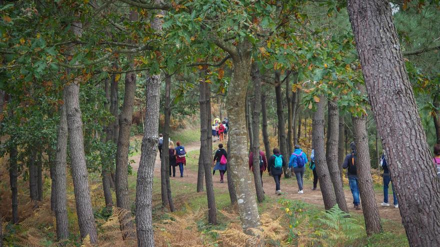 Abre la inscripción gratis para una nueva ruta de senderismo guiada por Vigo
