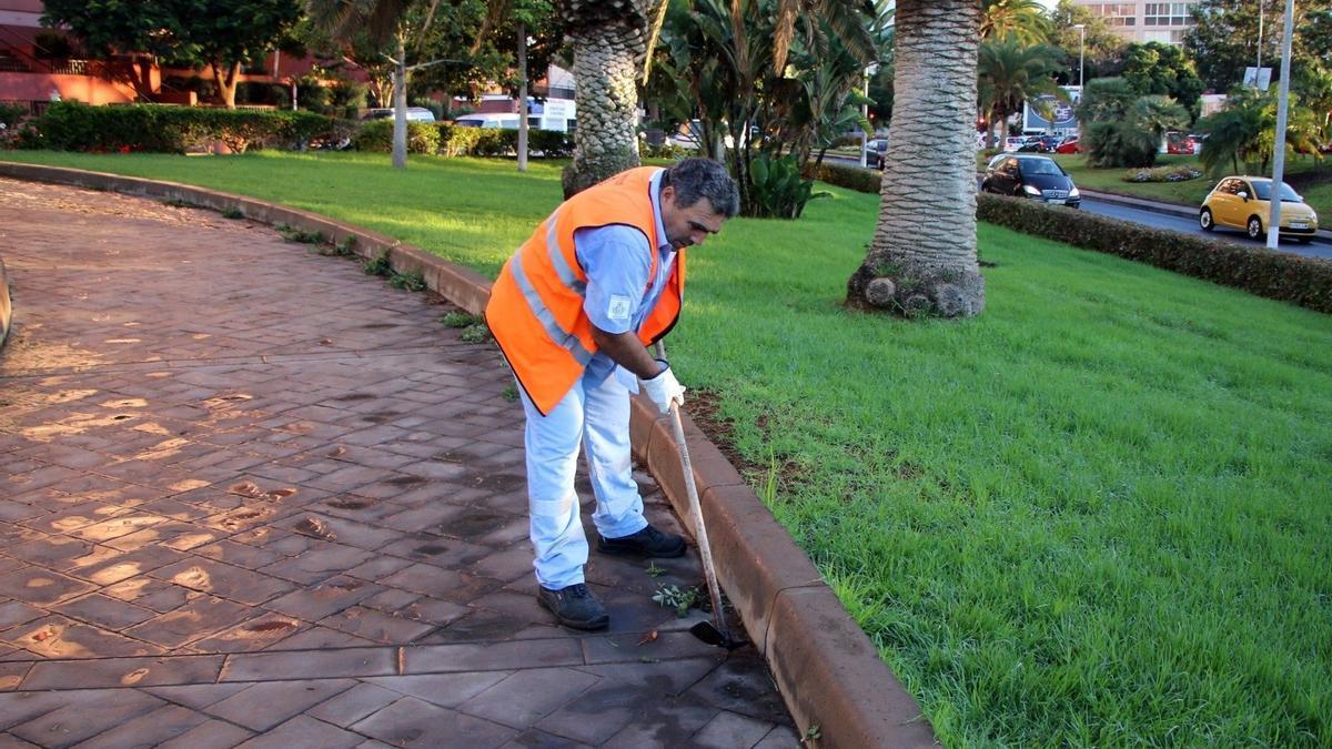 Un operario de parques y jardines en Santa Cruz de Tenerife.