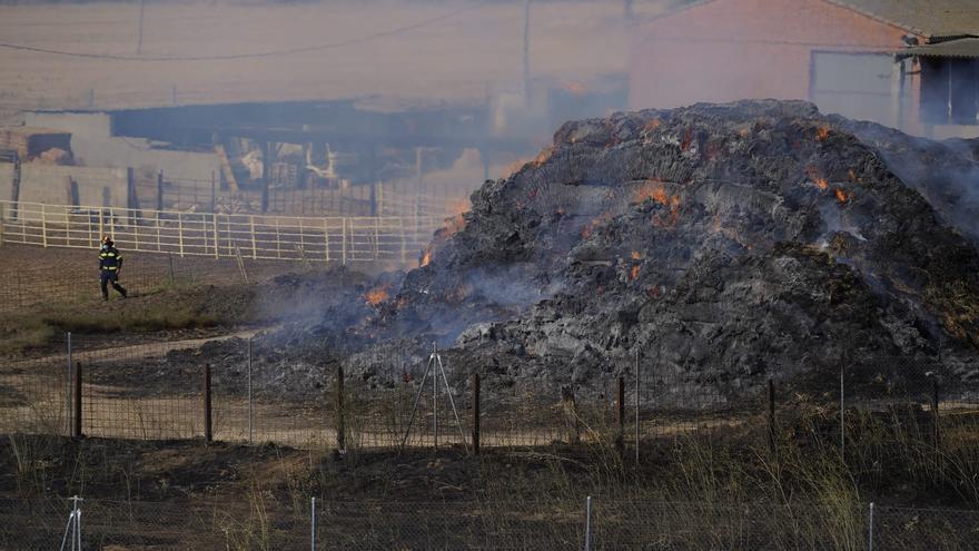 El incendio de la carretera de La Hiniesta fue intencionado