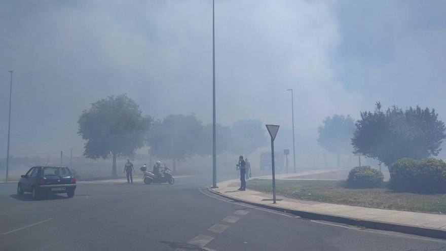 Incendio de pastos en la Ronda Norte de Badajoz