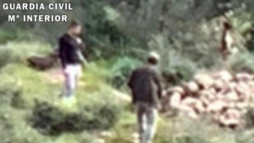 La Federación de Caza actuará contra quienes ahorcaron a un perro en Almogía