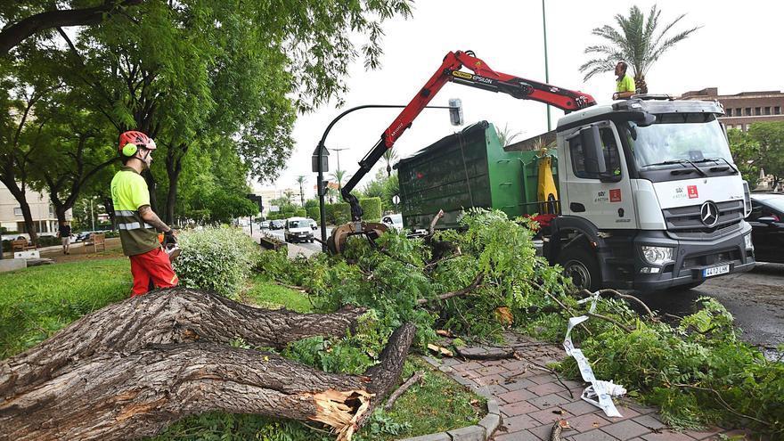 La tormenta que barre la Región desborda una rambla, deja granizo y derriba árboles