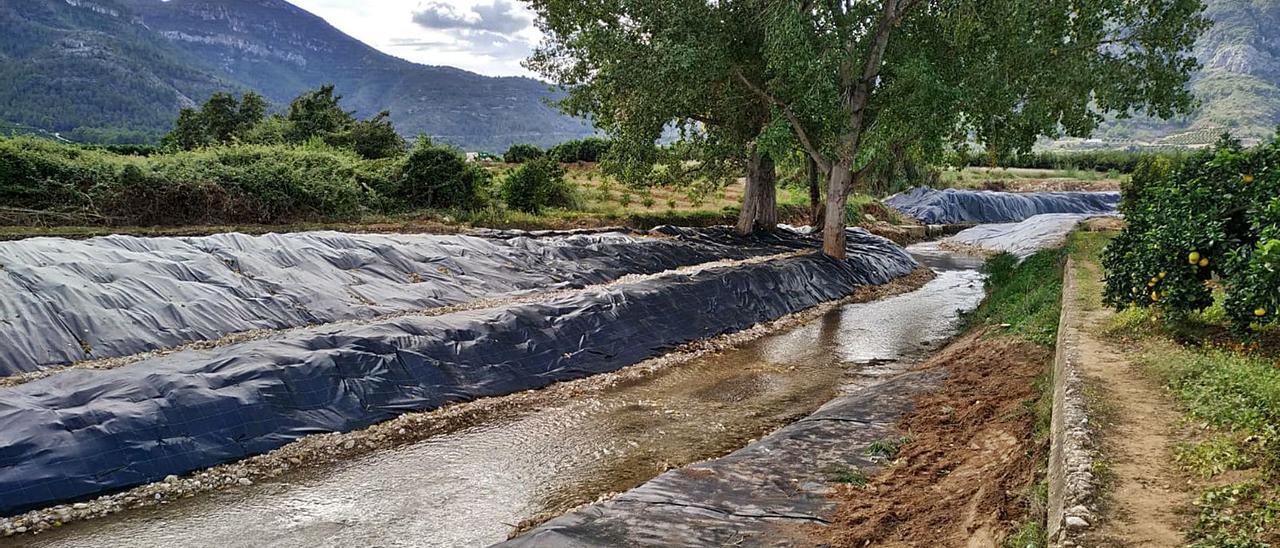 El cauce del río Vaca, a su paso por Benifairó de la Valldigna, durante las labores para erradicar la caña y recuperar flora de ribera.   LEVANTE-EMV